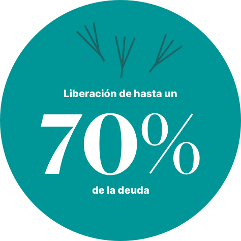 liberación deuda